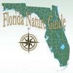 Florida Nature Guide Email