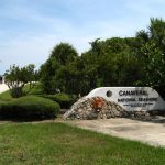 Canaveral National Seashore Link on Florida Nature Guide